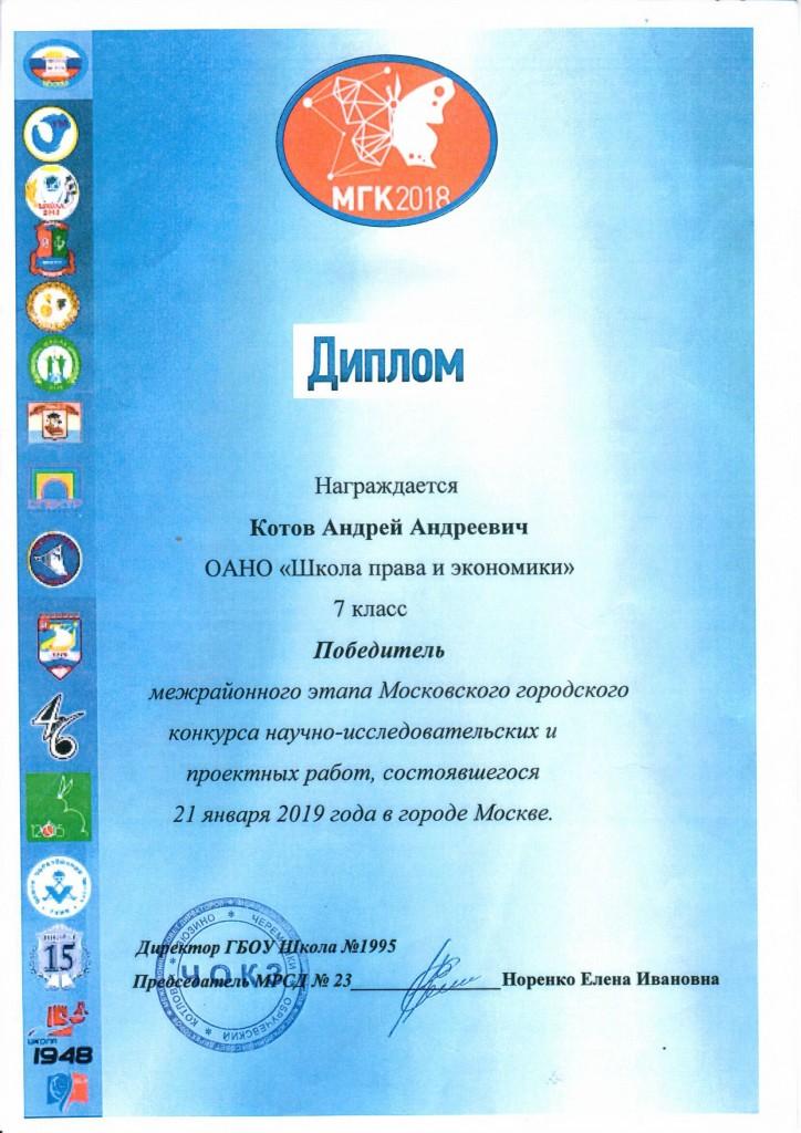 Котов диплом победителя (1)